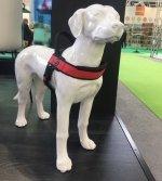 Szelki PRIMO PLUS czerwone dla dużego psa