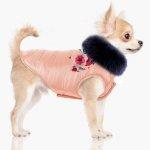 różowa, puchowa kurtka, obszyta kołnierzem ze sztucznego futra dla psa od Milk&Pepper