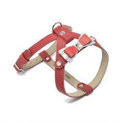 Leather harness Prestige red