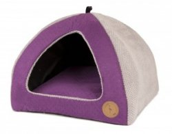 Dog House BELLA violet