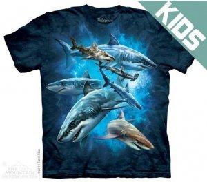 Koszulka dziecięca THE MOUNTAIN SHARK COLLAGE 15-3304