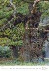Kalendarz ścienny wieloplanszowy Trees 2021 - październik 2021
