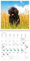 Kalendarz ścienny wieloplanszowy Dogs 2022 z naklejkami - styczeń 2022