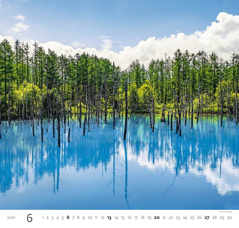 Kalendarz ścienny wieloplanszowy Aqua 2021 - czerwiec 2021