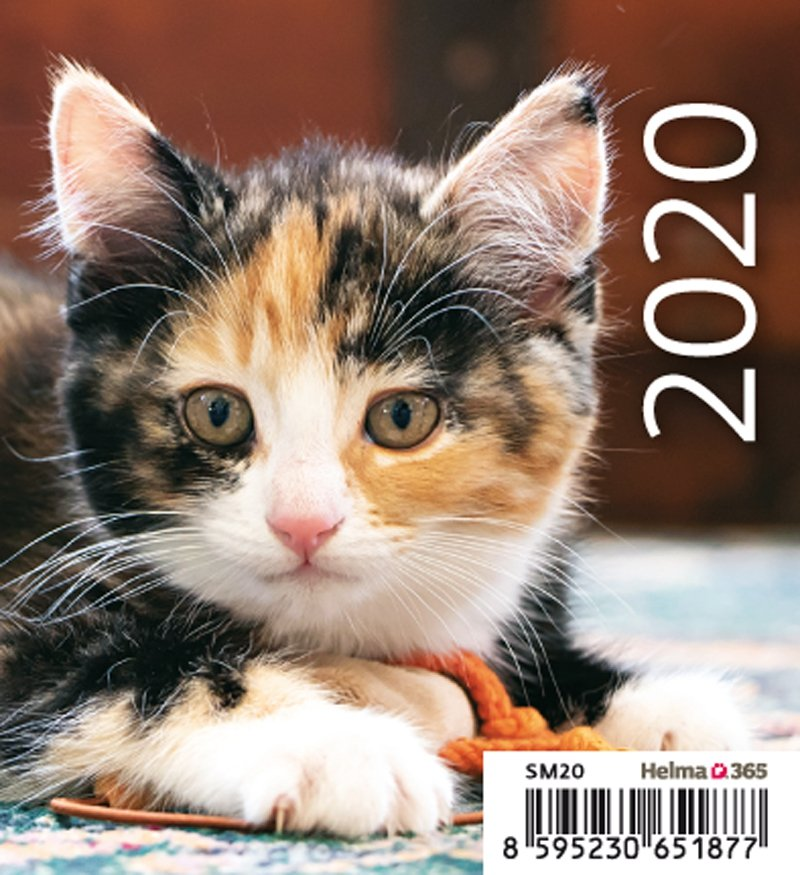 Kalendarz biurkowy 2020 mini Kotki - okładka