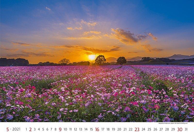 Kalendarz ścienny wieloplanszowy Landscapes 2021 - maj 2021