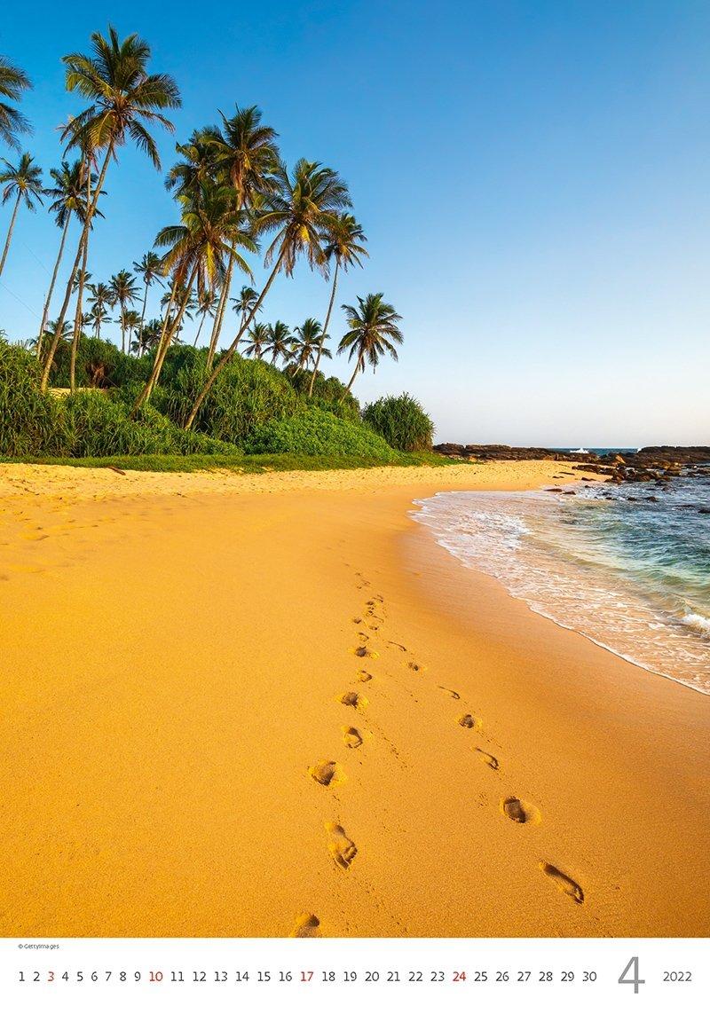Kalendarz ścienny wieloplanszowy Tropical Beaches 2022 - kwiecień 2022