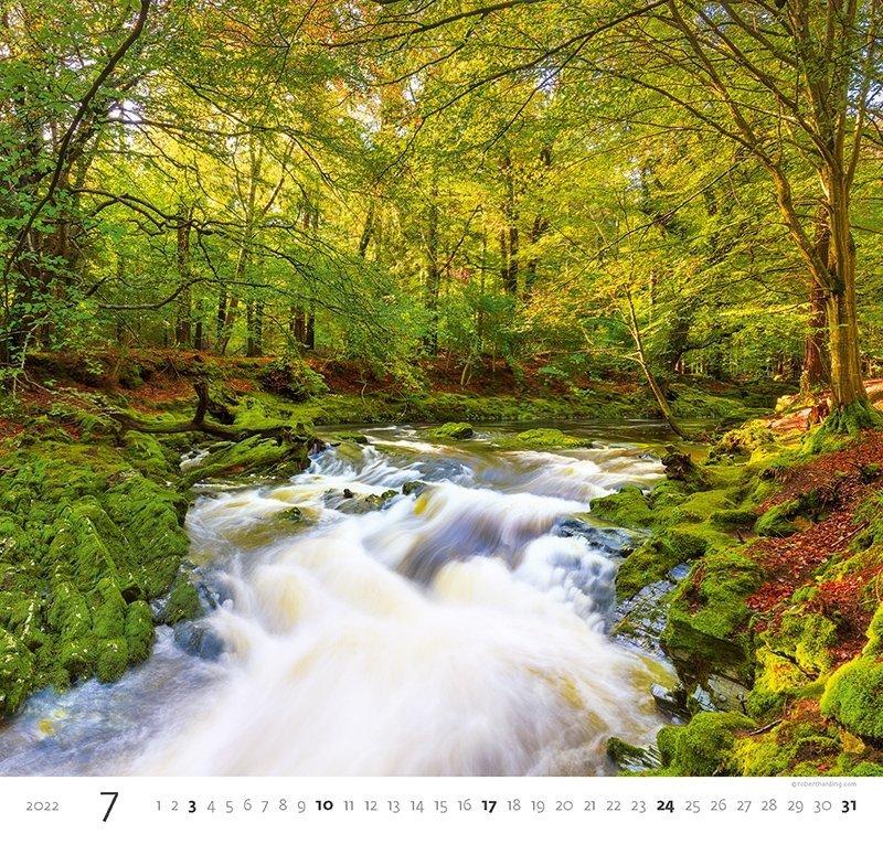 Kalendarz ścienny wieloplanszowy Forest 2022 - lipiec 2022