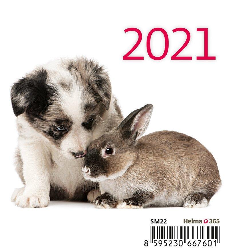 Kalendarz biurkowy 2021 Zwierzątka (Pets) - okładka