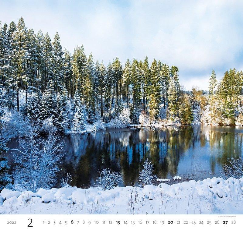 Kalendarz ścienny wieloplanszowy Forest 2022 - luty 2022