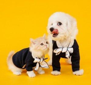 Karmy dla psa i kota