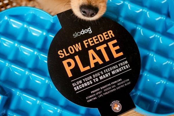 Miska slow food spowalniająca jedzenie SLODOG®