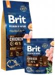Brit Premium By Nature M Adult 15kg