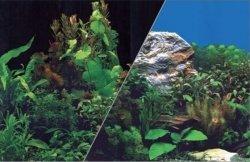 ZOLUX 354862 Tło akw. 30x40cm rośliny czarne/ rośl