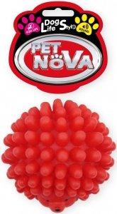 Pet Nova 1533 Jeżyk 6,5cm, czerwony