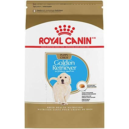 Royal 257570 Golden Retriever Puppy 3kg