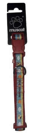 ZOLUX 546660RO Obroża taśma Picnic 20mm czerwona*