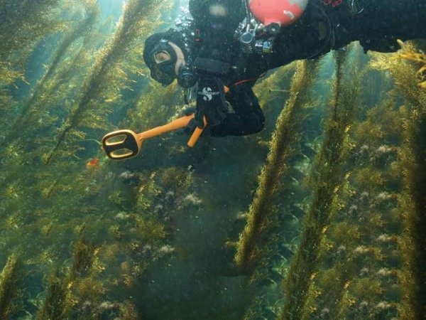 Podwodny wykrywacz metali Quest Metal Detectors Scuba Tector czarny