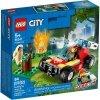 City pożar lasu