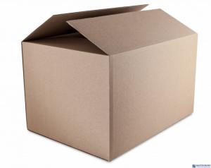 Karton wysyłkowy DATURA 530x264x350 tektura trójwarstwowa szara