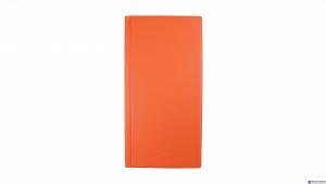 Wizytownik na  96wiz.orange BIURFOL KWI-04-04 (pastel pomara.)