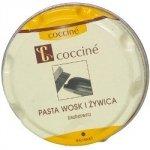 Pasta do obuwia (40 g)