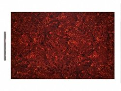 Materiał na pickguardy BOSTON 29x45cm (TI, 4w)
