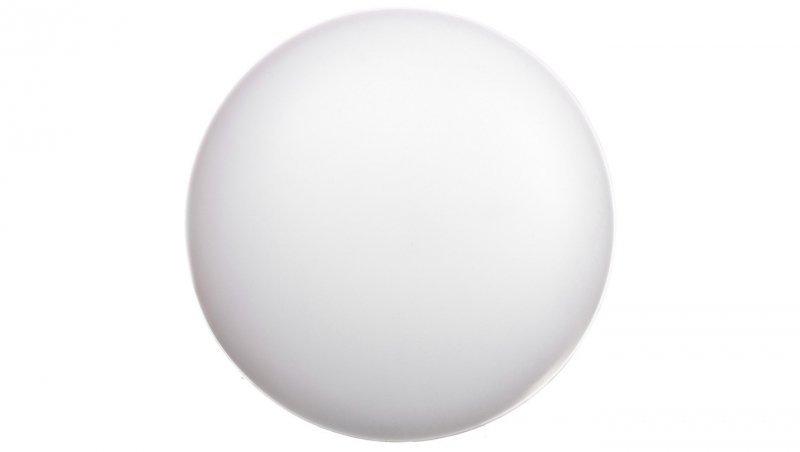 Plafoniera LED 13W PLAO LB LED 260 ED 1500lm/840 IP54 biały z czujnikiem ruchu 300101.00008