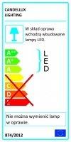 RICO LISTWA 2X6W LED SMD GŁÓWKA OKRĄGŁA 1E Z PRZEGUBEM KD SYSTEM KLOSZ WYMIENNY CHROM/BEZBARWNY