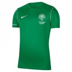 Koszulka Treningowa Nike JNR Warta Poznań S668511 L (147-158cm) zielony