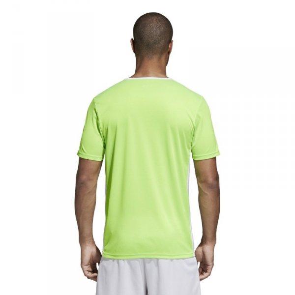 Koszulka adidas Entrada 18 JSY CE9758 zielony XL