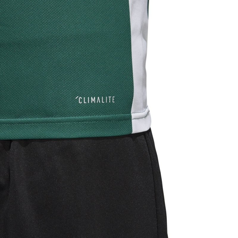Koszulka adidas Entrada 18 JSY CD8358 zielony M