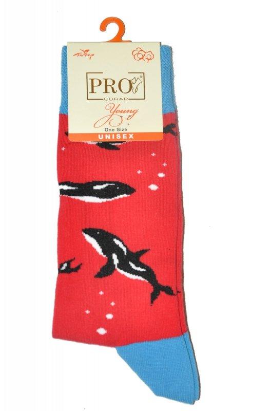 Skarpety PRO Cotton Young Socks 11012 39-44