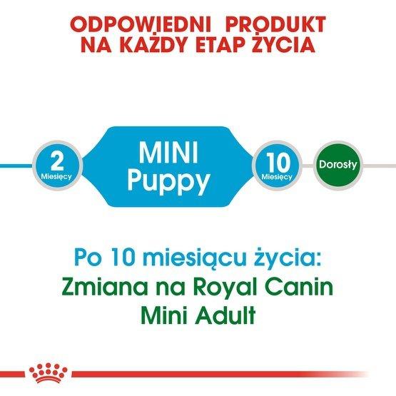 Royal Canin Mini Puppy karma sucha dla szczeniąt, od 2 do 10 miesiąca życia, ras małych 8kg