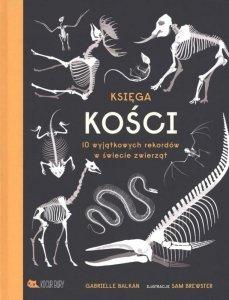 Księga kości