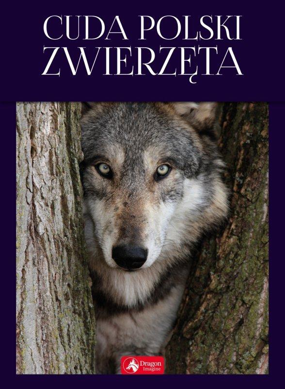 Cuda polski zwierzęta