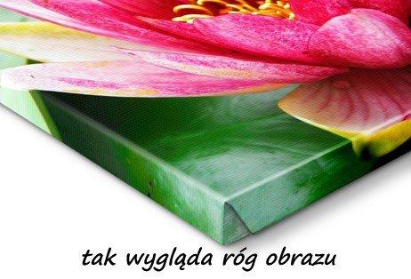 Fotoobraz 70x100 - obraz z twojego zdjęcia