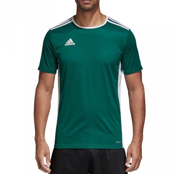 Koszulka męska adidas Entrada 18 Jersey zielona CD8358