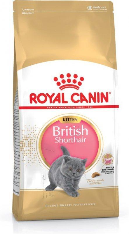 Karma Royal Canin KITTEN BRITISH (10 kg )