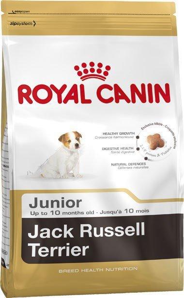 Karma Royal Canin SHN Breed Jack Russ Jun (3 kg )