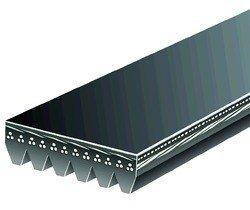 Pasek wielorowkowy 6PK2225 K1500 1996-1998 4.3 L. 1997-1999 5.0 L. 5.7 L.
