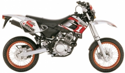 Sherco 125 Ipone / Shark replica