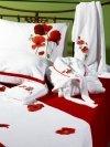 Sarev pościel satyna bawełniana Poppy w maki 200x220