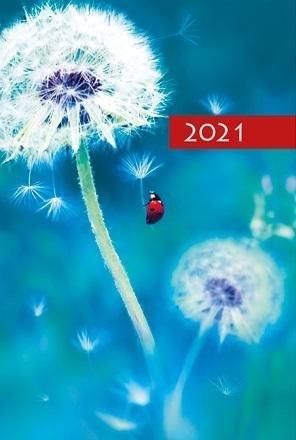 Terminarz 2021 B7 Mały Kolorowy Dmuchawiec