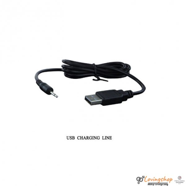 PRETTY LOVE - PROSTATE MASSAGER, USB 3 rot; 12 vibr. USB
