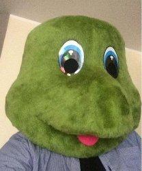 Głowa chodzącej maskotki - Żółw