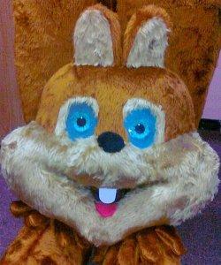 Głowa chodzącej maskotki - Wiewiórka