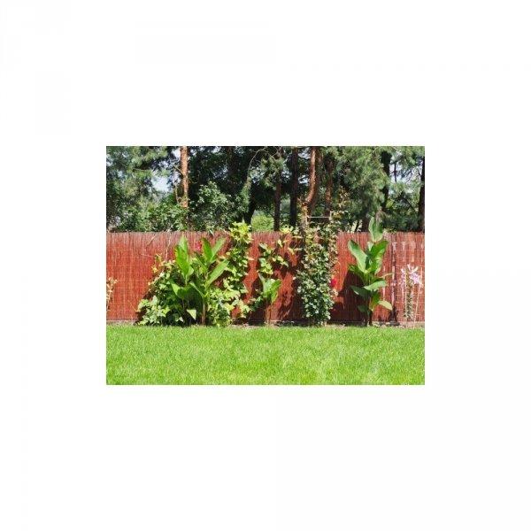 Mata ogrodowa (5m/1,6m) - sklep z wiklina - zdjęcia 1