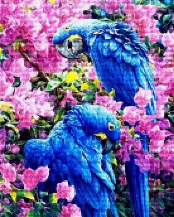 Haft Diamentowy Niebieskie Kakadu 45x55 cm K