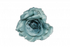 Róża wyrobowa - 20TJ24M